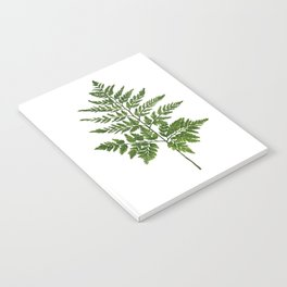 Fern 2 Painting Notebook