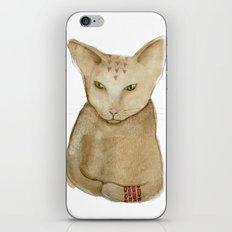 Totem Kitteh 1 iPhone & iPod Skin