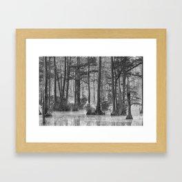 Adams Mill Pond 38 B&W Framed Art Print