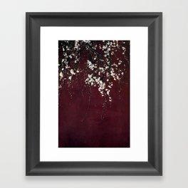 blossoms on ruby red Framed Art Print