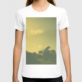 Hawaii Plane - Maui T-shirt
