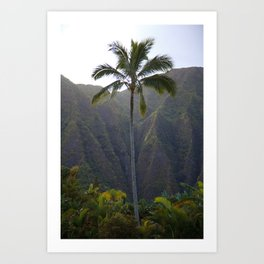 Paradise Palm tree Art Print