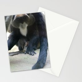 MN Zoo Monkey Stationery Cards