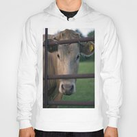 cow Hoodies featuring Cow. by wil-ko