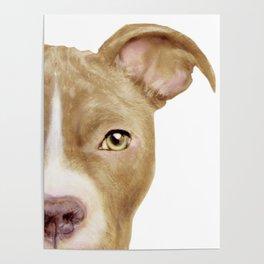 Pitbull light brown Dog illustration original painting print Poster