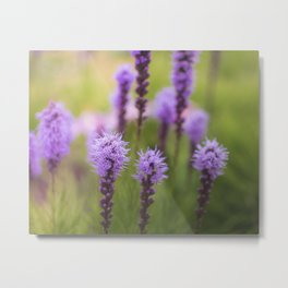 Pretty Purpleness Metal Print