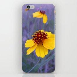 Mathematic Sunset iPhone Skin