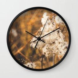 Warm Winter Afternoon Wall Clock