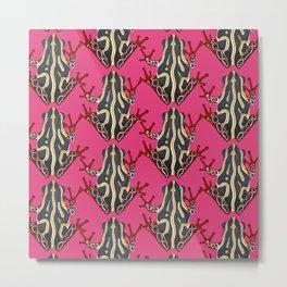 congo tree frog pink Metal Print