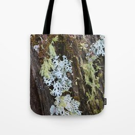 Moss and Fungi on a Forest Tree Tote Bag