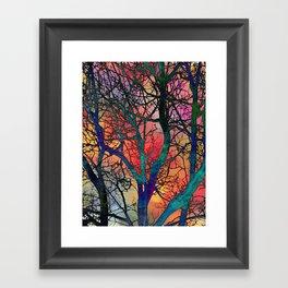 Dreamy Sunset Framed Art Print