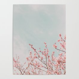 Pink Flowers in the Sky Poster