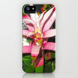 Bromelia iPhone Case
