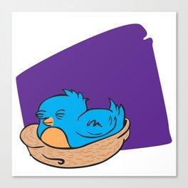 blue bird sleeping in a nest Canvas Print