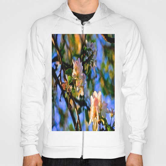Evening Blossoms Hoody