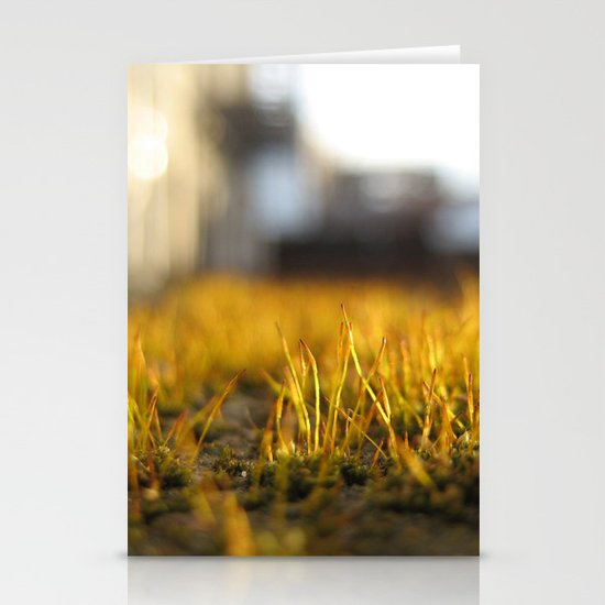 Brooklyn Moss Stationery Cards