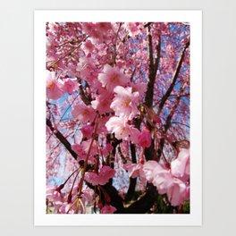 Pink Parade Art Print