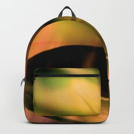 Every Which Way Backpack