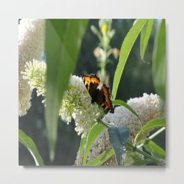 Small Tortoiseshell Butterfly Metal Print
