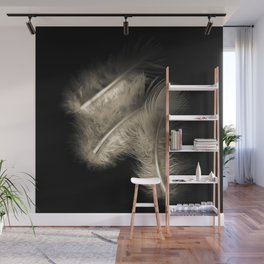 Three feathers in black and white Wall Mural