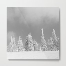 Winter day 6 Metal Print