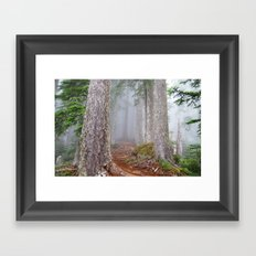 Foggy Forest Framed Art Print