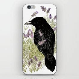 Relax Raven iPhone Skin