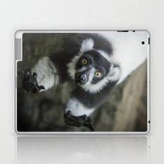 Lemur In The Glass Laptop & iPad Skin