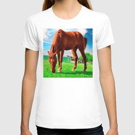 horse eating grass T-shirt