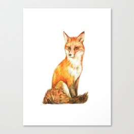 Red Fox in the White Silence Canvas Print