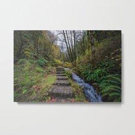 Path to the falls Metal Print