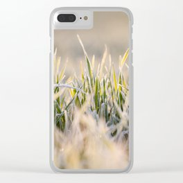 frost on the wheat Clear iPhone Case