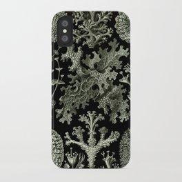 Naturalist Lichen iPhone Case