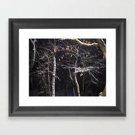 Backyard Snow Framed Art Print
