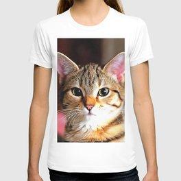Artistic Tabby Cat Kitten Portrait T-shirt