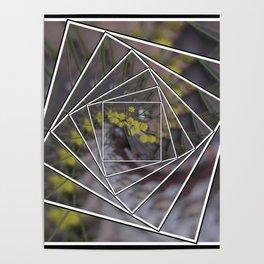 Wattle Mandala Poster