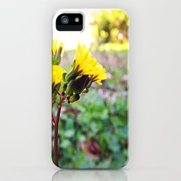 Yellow flowers! iPhone Case