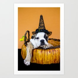 Bulldog Makes Funny Pose in a Pumpkin Basket while Wearing a Witch Hat for Halloween Art Print