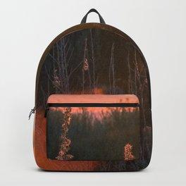 Morning Oats Backpack
