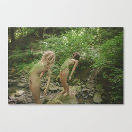 Bushy Canvas Print