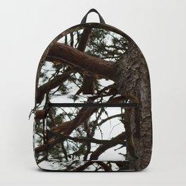 Pine Backpack
