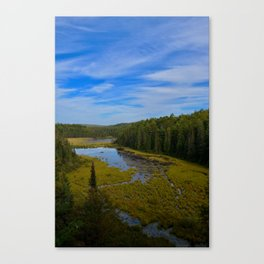 Beaver Dam Lookout Canvas Print