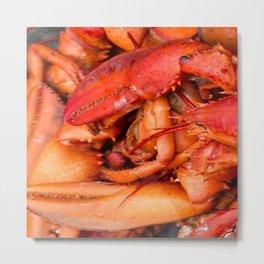Red Lobster Metal Print