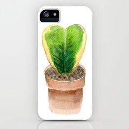 Sweetheart Hoya iPhone Case