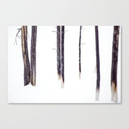 Bare Trees in Winter Canvas Print
