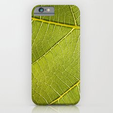 Fig Leaf iPhone 6 Slim Case