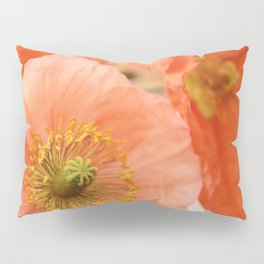 Old Fashioned Pillow Sham