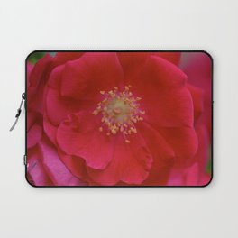 Red Bloom Laptop Sleeve