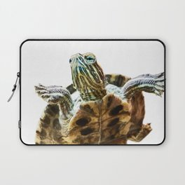 Small red-eared turtle in aquarium Laptop Sleeve
