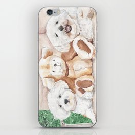 Two Bichons and A Friend iPhone Skin
